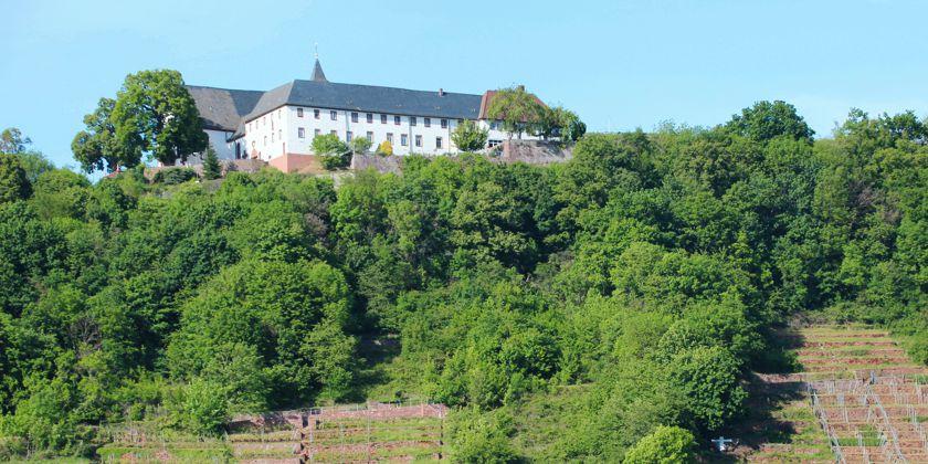 Engelberg großheubach parken kloster Franziskanerkloster Engelberg